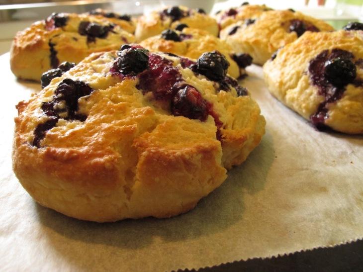 creme fraiche pasta, blueberry scones and trademe 041