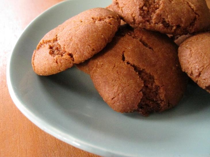 gingernuts and chocolate cake 029
