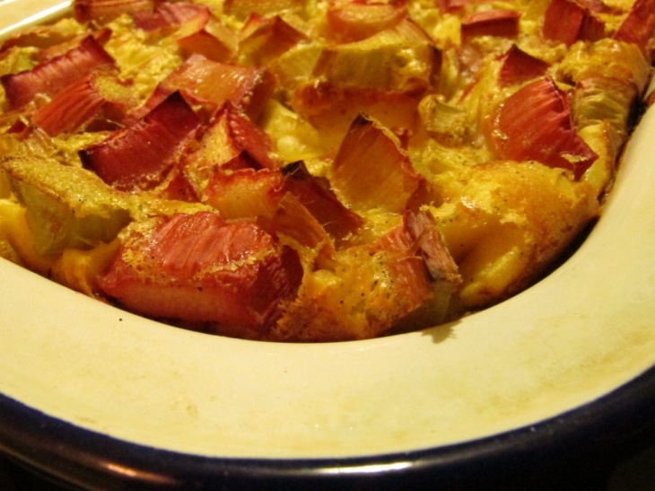 slow-cooked beef, rhubarb clafoutis 018